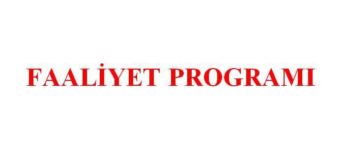 2020 Yılı Faaliyet Programı yayınlandı
